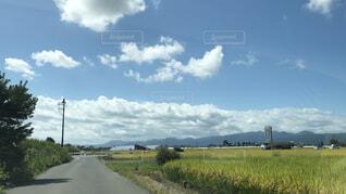 自然,風景,空,屋外,雲,田舎,草,樹木,田んぼ,草木,田んぼ道