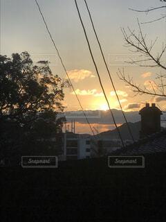 空,屋外,太陽,雲,夕焼け,樹木