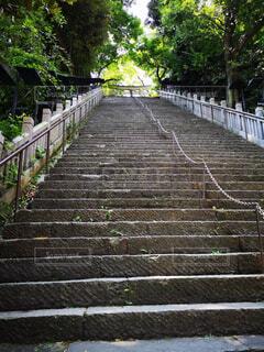 空,夏,緑,神社,階段,木々,旅行,旅,寺,trip,長い,トリップ