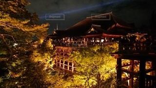 風景,空,清水寺,夜,夜景,屋外,京都,家,樹木,ライトアップ,明るい,寺