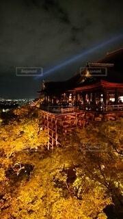 風景,空,建物,清水寺,夜景,京都,タワー,都会,ライトアップ,高層ビル,明るい,寺