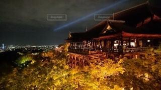 風景,空,建物,清水寺,夜,夜景,京都,家,樹木,ライトアップ,京都タワー,寺