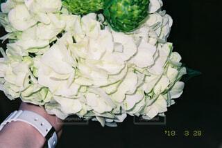 花,屋内,花束,フラワー,紫陽花,フィルム,6月,草木,白紫陽花