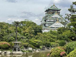 花,木,緑,池,日本庭園,大阪城,石垣
