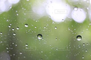 自然,雨,水滴,水面,梅雨,ドロップ,液滴