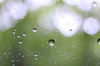 自然,雨,水面,ドロップ,液滴