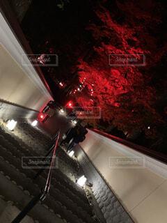 夜,神社,車,ライトアップ,明るい,寺,車両,陸上車両