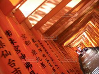 京都,神社,赤,伏見稲荷神社,旅行,テキスト,風景画