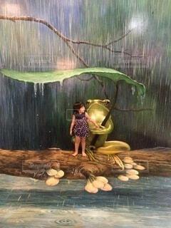 カエルと雨あがりをまつの写真・画像素材[4506919]