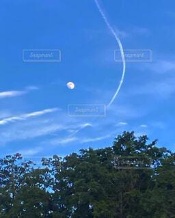 空,屋外,樹木,月,ヒコウキ雲,月と雲のランデブー