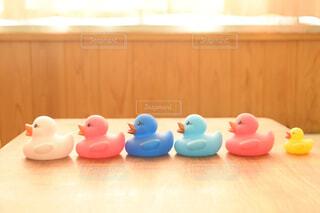 鳥,屋内,テーブル,鴨,グッズ,漫画,お風呂のおもちゃ