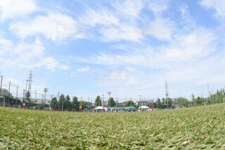 空,芝生,屋外,緑,雲,青空,コート,景色,草,サッカー,グランド,人工芝