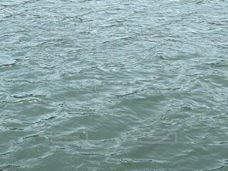 晴れの日の水面の写真・画像素材[4532881]