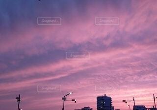 空,夕日,屋外,ピンク,雲,夕暮れ,都会,高層ビル,神秘的,くもり,紫色