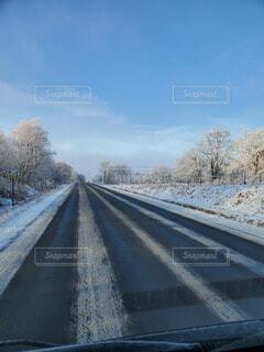 自然,空,冬,雪,綺麗,樹氷