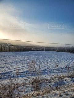 風景,空,冬,屋外,雲,冬景色