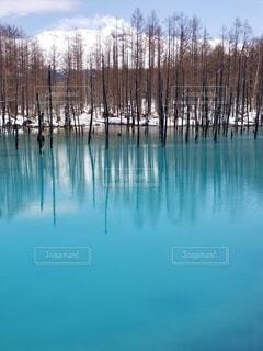 風景,絶景,綺麗,観光地,水面,池,青い池