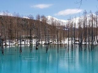 自然,風景,空,雪,屋外,綺麗,水面,樹木,青い池