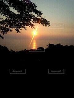 自然,空,夕日,太陽,夕暮れ,シルエット,樹木