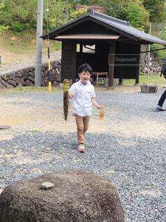 竹の子の写真・画像素材[4500469]