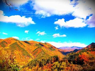 自然,風景,空,秋,絶景,紅葉,屋外,雲,山,樹木,峡谷,バック グラウンド