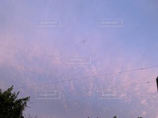 空,屋外,雲,夕焼け,樹木,景観