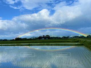自然,風景,空,屋外,雲,虹