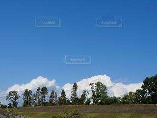 自然,風景,空,屋外,雲,山,景色,草,樹木,高原,草木