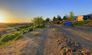 自然,風景,空,夕日,屋外,夕焼け,樹木,田舎道,砂利道,畑道