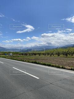 風景,空,屋外,雲,道路,山,樹木,道,通り,草木