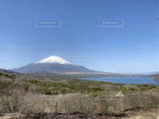 風景,空,富士山,雲,山,樹木,草木