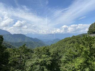 自然,風景,空,屋外,森,雲,山,景色,樹木,景観,草木