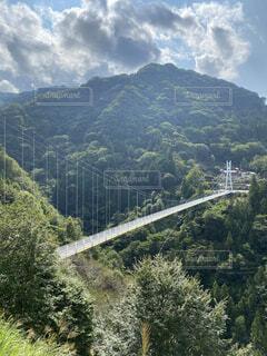 風景,空,橋,屋外,森,緑,雲,山,景色,樹木,旅行,吊り橋