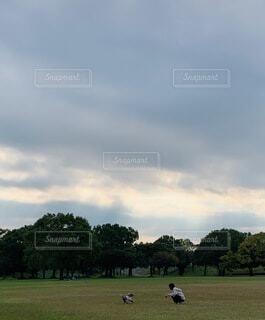 背景に木々のある大きな緑のフィールドの写真・画像素材[4635613]