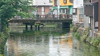 透き通る川に架かる橋。の写真・画像素材[4553949]