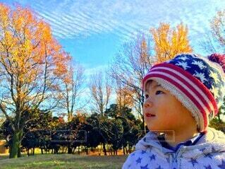 見てごらん。秋だよ。の写真・画像素材[4509164]