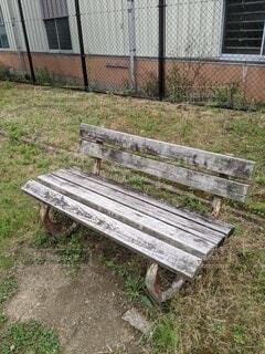 いつも公園を見守る木製ベンチの写真・画像素材[4534433]