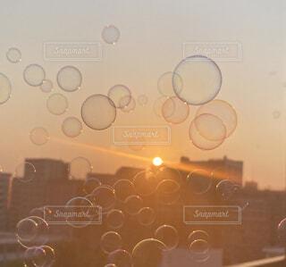 夕陽に浮かぶシャボン玉の写真・画像素材[4527776]