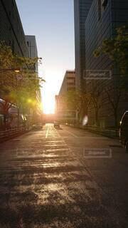 夕日の写真・画像素材[4537057]