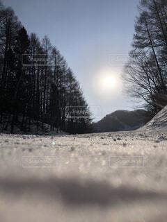 雪に覆われた斜面の写真・画像素材[4519664]