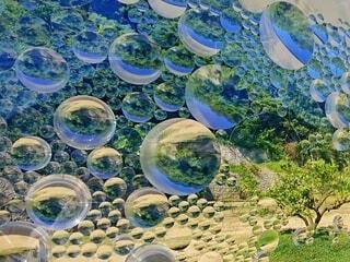 水玉模様のレンズの数だけ、パラレルワールド。でもワンワールドの写真・画像素材[4554969]
