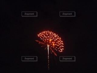 花火の横顔の写真・画像素材[4660052]