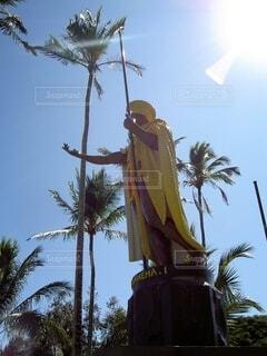 太陽とヤシの木とカメハメハの写真・画像素材[4676057]
