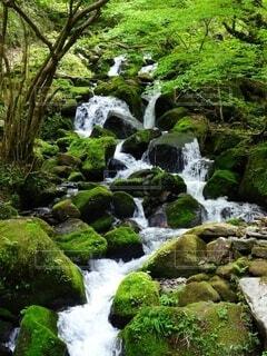 山陰海岸ジオパーク 雨滝の流れの写真・画像素材[4690683]