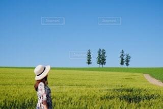 美瑛の丘での写真・画像素材[4748825]