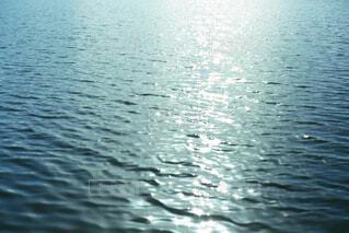 静かな水面の写真・画像素材[4526231]