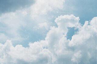 夏空の写真・画像素材[4729256]
