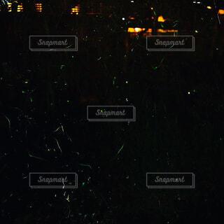 蛍舞う梅雨の川辺の写真・画像素材[4551672]