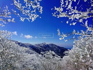 雪に覆われた山の眺めの写真・画像素材[4554722]