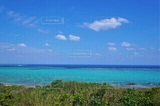 石垣島の珊瑚礁の写真・画像素材[4542773]